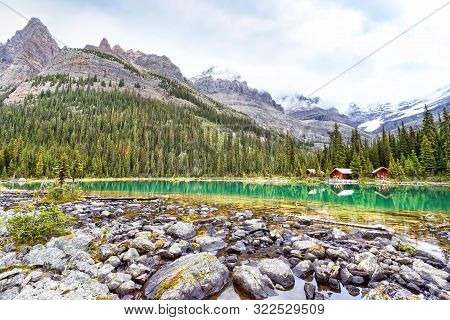 Lake O'hara At Sargent's Point In The Canadian Rockies Of Yoho National Park