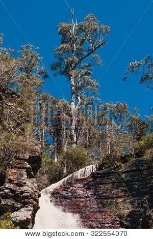 Hidden Waterfalls And Wild Australian Bush During A Hike In Tasmania