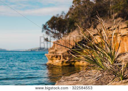 View Of Conningham Beach In Tasmania, Australia And Its Pristine Rugged Coastal Beauty