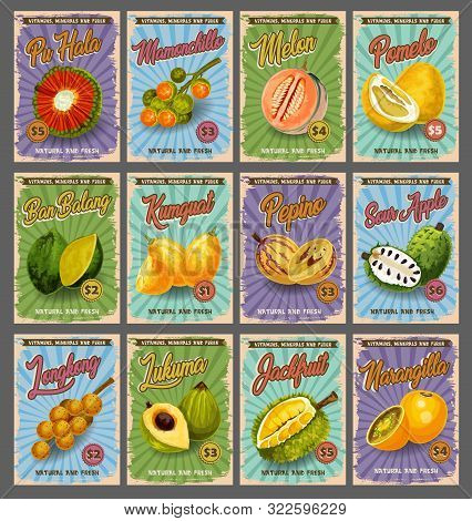 Tropical Fruits Market Price Cards, Farm Market Of Fruit. Vector Pu Hala, Mamonchillo Or Melon And P