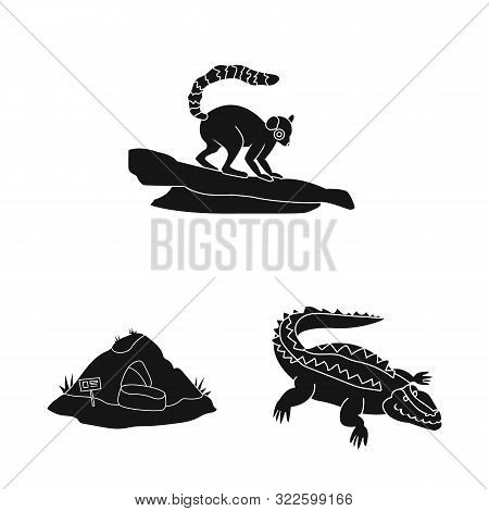 poster of Vector design of fauna and entertainment logo. Collection of fauna and park stock vector illustration.