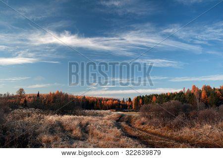 Taiga Sibirian In The Irkutsk Region, Russia.