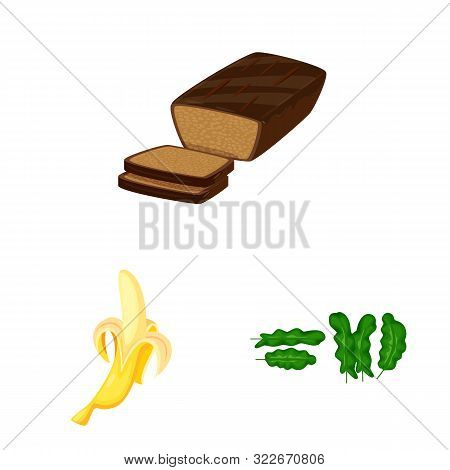 Vector Illustration Of Tropical And Ripe Sign. Collection Of Tropical And Potassium Stock Symbol For