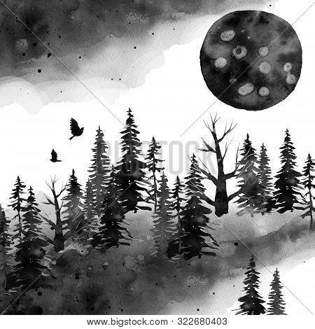 Black Gloomy Forest And Moon, Spruce Watercolor, Background Hand Drawing