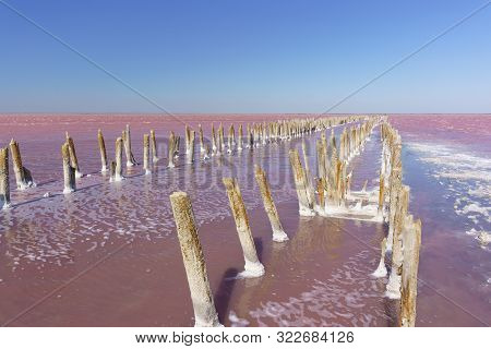 View Of The Wreckage Of A Wooden Dam On The Pink Lake Sasyk-sivash Textured Wood Covered With Salt C