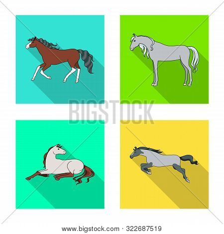 Vector Illustration Of Breed And Equestrian Logo. Collection Of Breed And Mare Vector Icon For Stock