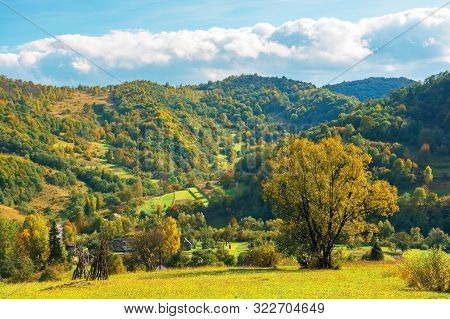 Wonderful Rural Landscape In Mountains. Sunny Autumn Weather With Clouds On The Sky. Tree In Yellow