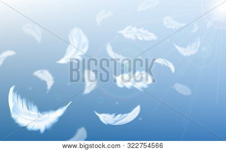 White Feathers Fly In Air On Blue Sky Background With Sun Beams And Lens Flare, Realistic Vector Ill