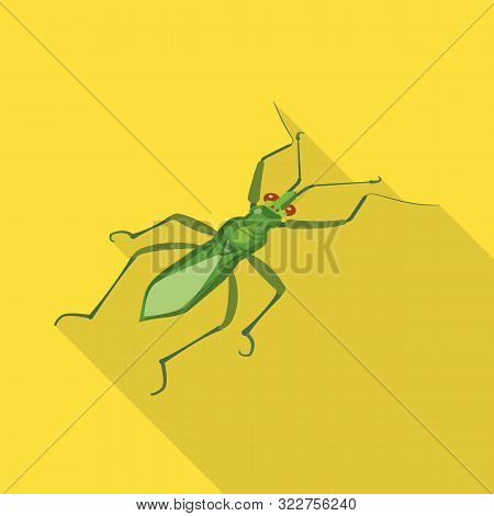 Isolated Object Of Grasshopper And Beetle Logo. Collection Of Grasshopper And Ant Vector Icon For St
