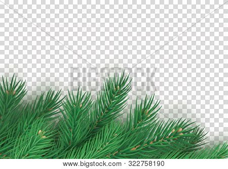 Winter Background With Realistic Branches Of Christmas Tree. Merry Christmas Greeting Card Template