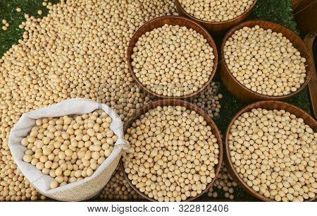 Raw Dried Soybean Or Soya Bean