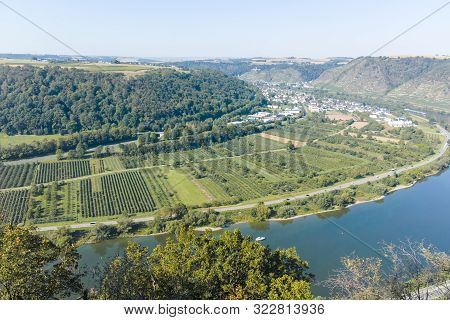 Landscape View On Mosel River Valley And Green Terraced Vineyards, Germany, Production Of Quality Wh