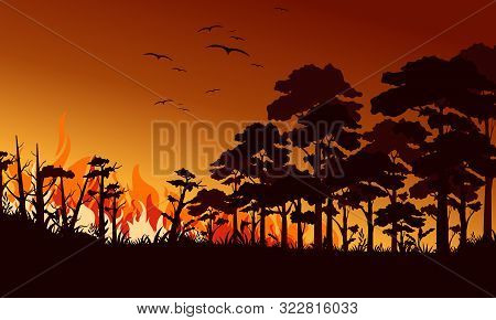Fire In Forest Flat Vector Illustration. Birds Flying Over Fire Flame. Wildfire Landscape, Wildland.