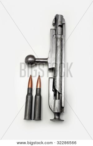 Mosin-nagant Bolt Action With Shells (1)