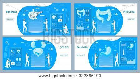 Pancreas, Stomach, Intestines Doctors Examine. Cystitis, Urolithiasis Diagnose And Treat Human Urina