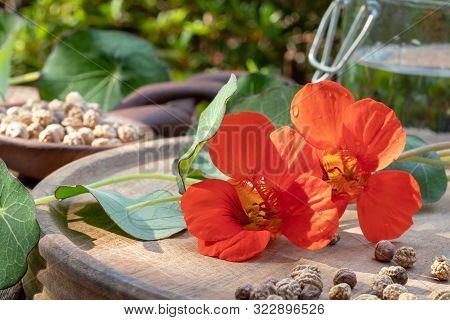 Fresh Nasturtium, Or Tropaeolum Majus Flowers And Seeds