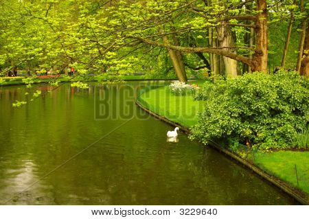 Picture of a beautiful park with a stream. poster