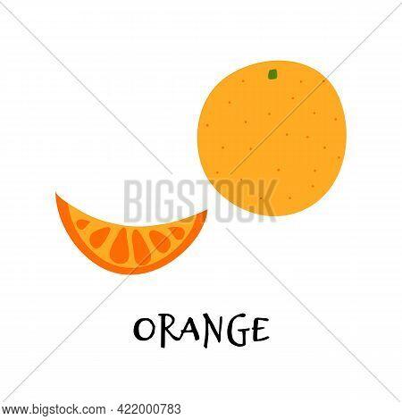 Vector Illustration Of Orange In Hand Drawn Flat Style.
