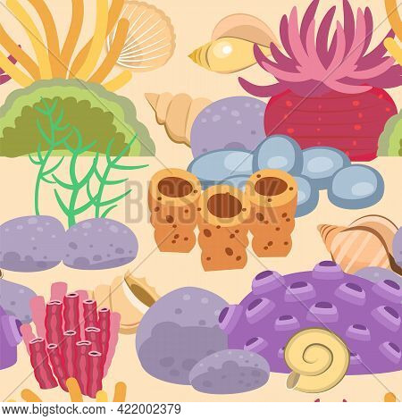 Coral Reef. The Bottom Of The Reservoir. Sea Ocean. Underwater Landscape With Plants, Algae And Cora