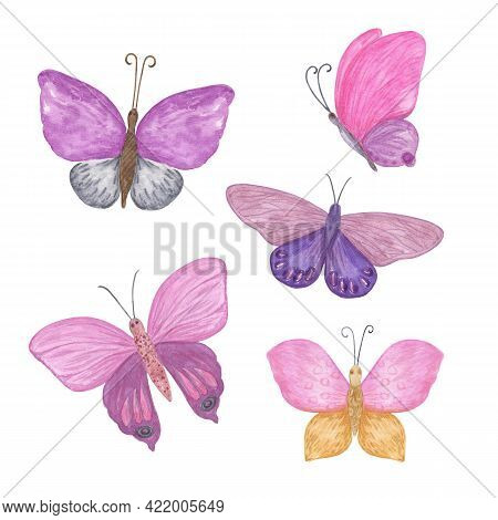 Multicolored Butterflies Set Watercolor Illustration Violet, Pink, Blue, Red, Yellow, Simple Hand Dr