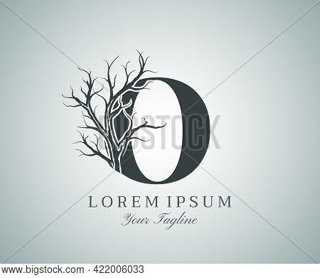 Letter O With Dead Tree Design Logo Icon. Creative Alphabetical Creepy Dry Tree Brach Nature Logo Te