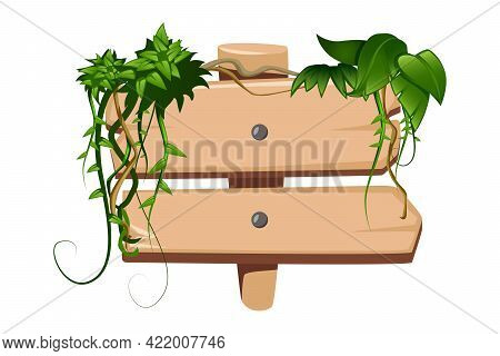 Cartoon Icon With Tropical Liana Twisting Round Wooden Sign Board Vector Illustration