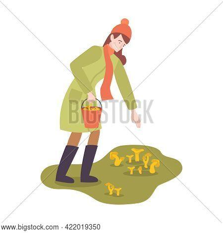 Woman With Bucket Gathering Chanterelle Mushrooms In Autumn Flat Vector Illustration