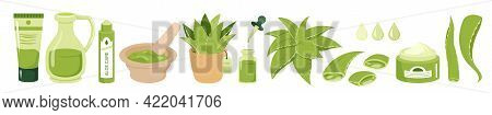Cartoon Juice Green Succulent Plant, Organic Gel Droplet From Aloe Leaves, Natural Cream, Serum And