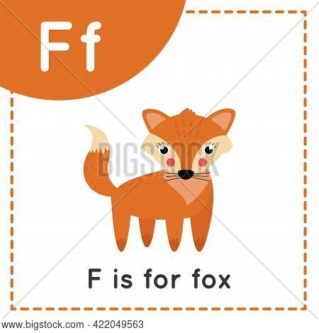 Animal Alphabet Flashcard For Children. Learning Letter F. F Is For Fox.