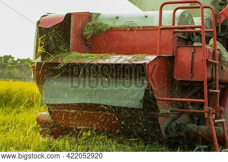 A Large Special Vehicle For Cutting And Threshing Raw And Ripe Paddy