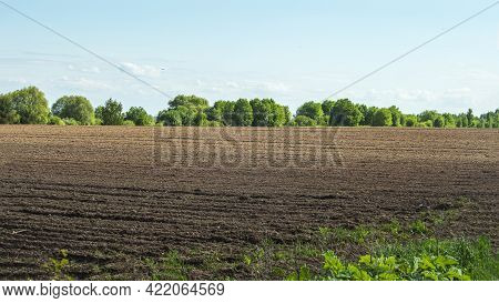 A Huge Plowed Field On A Sunny Spring Day, Before Sowing The Crop