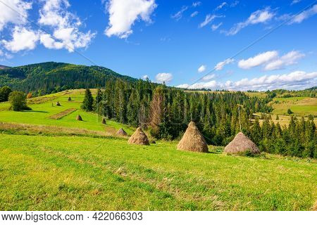 Rural Landscape With Haystacks On The Hill. Fields And Meadows In Mountains. Wonderful Carpathian Co