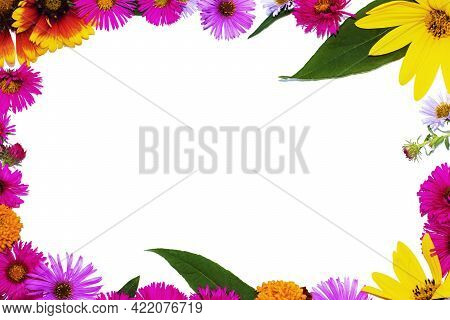 Photo Frame Of Bright, Multi-colored Flowers, On A White Background, With A Place For Text Or Photos