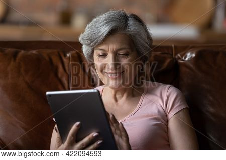 Mature Smiling Woman Sit On Couch At Home With Tablet