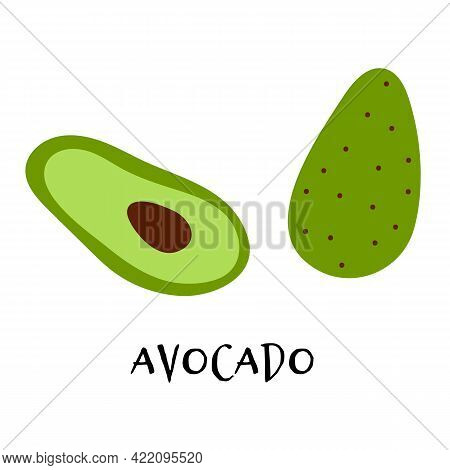Vector Illustration Of Ripe Avocado In Hand Drawn Flat Style.