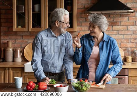 Older Couple Cooking Together Healthy Food In Modern Kitchen