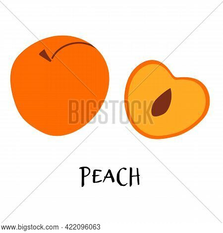 Vector Illustration Of Ripe Peach In Hand Drawn Flat Style.