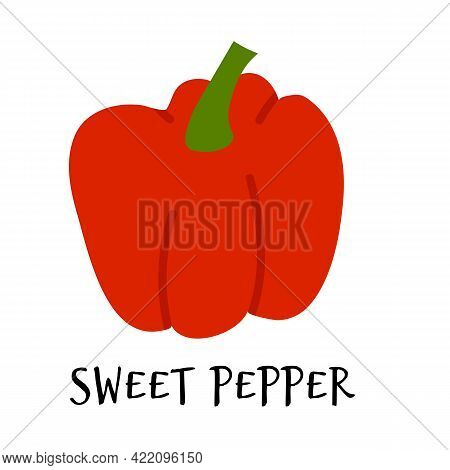 Vector Illustration Of Sweet Red Pepper In Hand Drawn Flat Style.