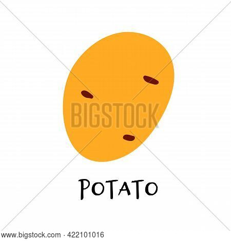 Vector Illustration Of Potato In Hand Drawn Flat Style.