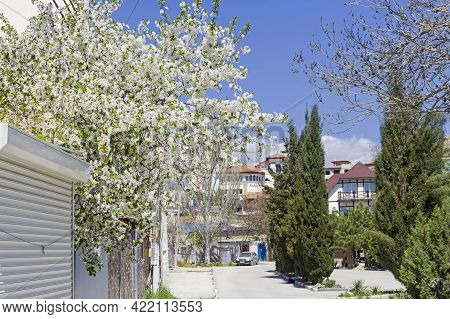 Deserted Street Of The Crimean Resort Town Outside The Tourist Season. Sudak, Crimea, Sunny Day At T