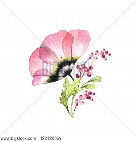 Watercolor Pink Anemone Bouquet. Big Transparent Flower With Leaves And Berries Isolated On White. H