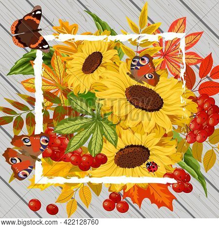 Vector Illustration With Sunflowers And Berries.sunflowers, Butterflies And Red Berries On A Wooden