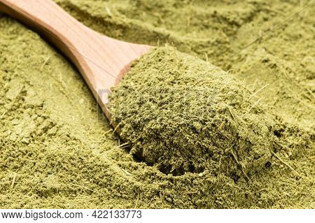 Wooden Spoon With Milled Stevia Rebaudiana Herb (natural Sugar Substitute) Close Up On Pile Of Sugar