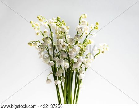 Bouquet Of Lily Of The Valley Isolated On White Background In Bright Sunlight. Delicate Floral Backg