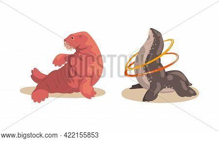 Sea Lion And Fur Seal Performing In Public In Dolphinarium Set Cartoon Vector Illustration