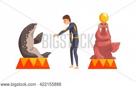 Sea Lion And Fur Seal Sitting On Pedestal Performing In Dolphinarium Or Oceanarium Set Cartoon Vecto