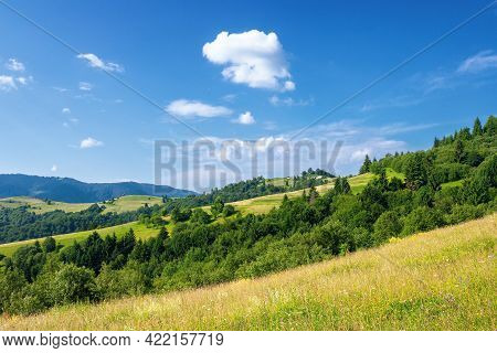 Rural Landscape In Summer. Beautiful Nature Scenery With Fields On The Hills Rolling In To The Dista