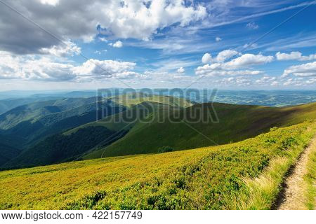 Grassy Hills And Meadows Of Borzhava Mountain Ridge. Beautiful Landscape In Summer On A Sunny Day Wi
