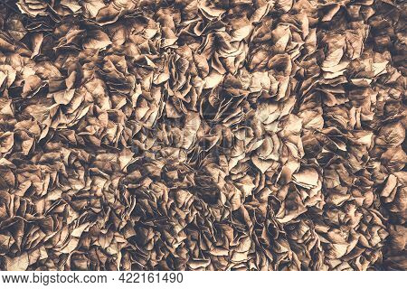 Background Of Stale Leaf On The Wall, Fall Nature Background, Artificial Foliage Texture. Brown Tone