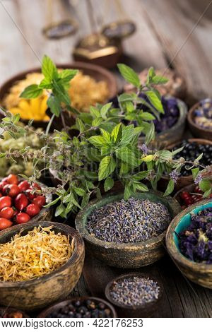 Homeopathy, herbal medicine on wooden table